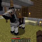 Minecraft 我が愛馬の名前決定!?馬に名前をつける方法
