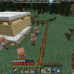 Minecraft 村人増殖と選別について
